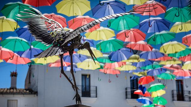 Paraguas del revés- Digital