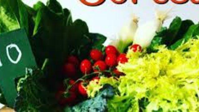 Conte signat + Cistella productes km0 de Terres de l'Ebre
