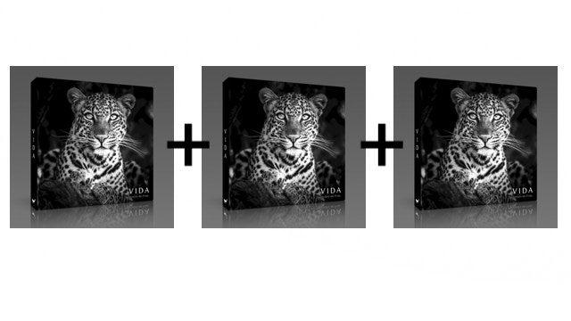 Pack 3 libros VIDA
