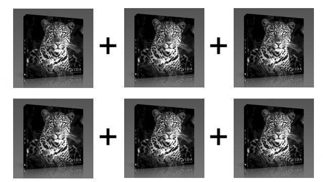 Pack 6 libros VIDA
