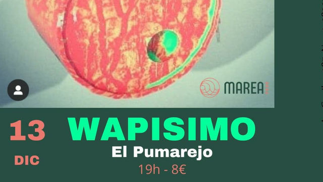 Wapisimo concert