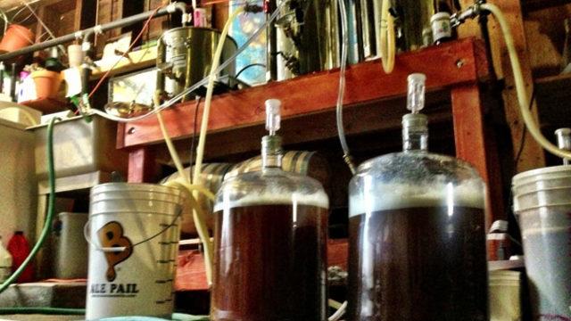 Taller d'elaboració de cervesa artesana