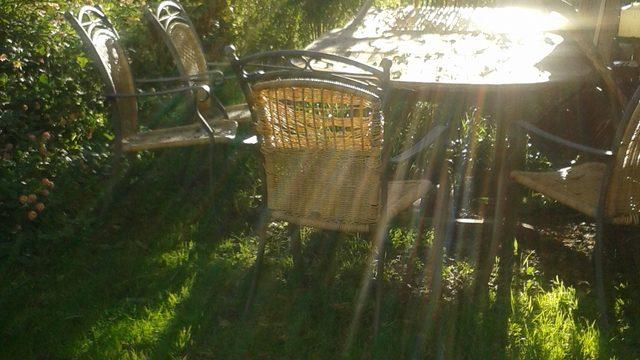 El llibre + 1 dinar al meu jardí + 1 visita guiada a la Navata medieval