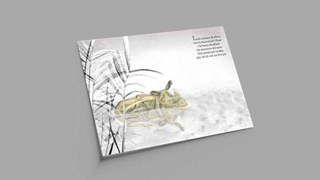 Llibre il·lustrat + Punt de llibre + Pòster