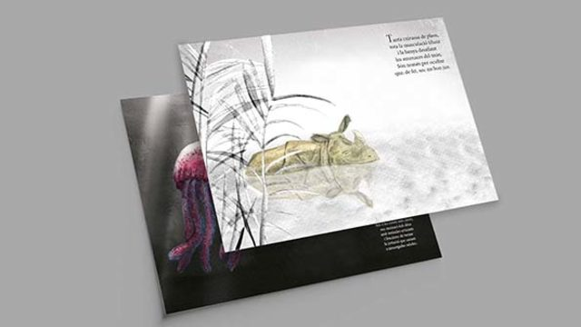 2 exemplars llibre il·lustrat + 2 punts de llibre + 2 pòsters
