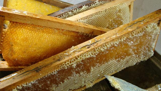 2 botes de miel+panal de miel