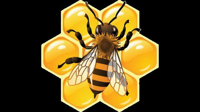 Todo para las abejas. Aportación sin recompensa.