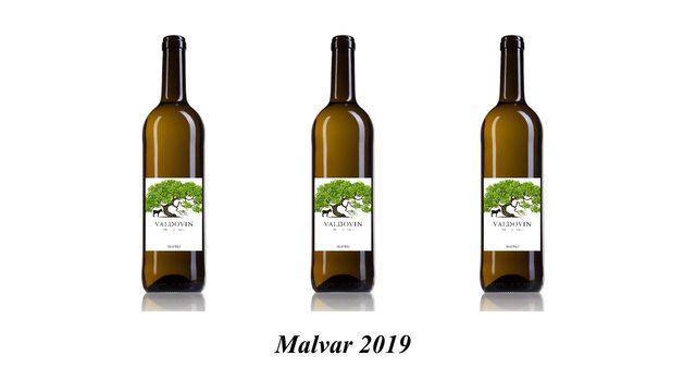 Caja Malvar cosecha 2019, caja de 6 botellas.