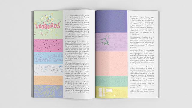 Revista Pájaro Azul IV (+ENVIO)