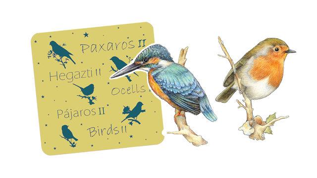 Pájaros II + 2 pegatinas