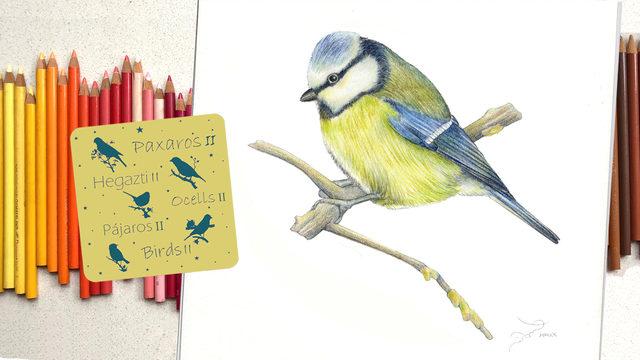 Pájaros II + Dibujo original de André Ramil