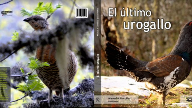 With the new book on the Cantabrian Capercaillie