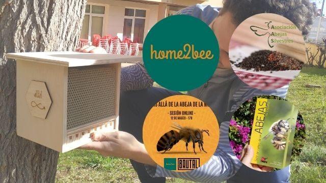 BEE-SITTER PREMIUM