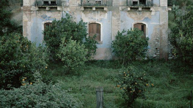 Jardines abandonados
