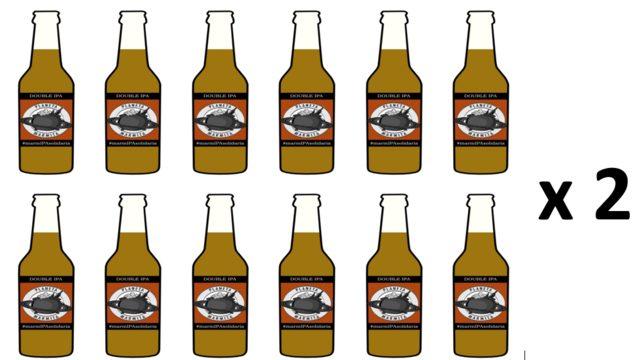 Pack 24 cervezas IPA artesanas