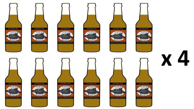 Pack 48 cervezas IPA artesanas