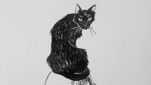"""Gato Negro - """"Miau"""""""