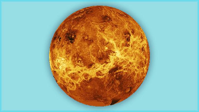 L'era digital, Venus
