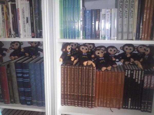 Vuelven los monos ladies monkeys quiere grabar su for Espectaculo de variedades