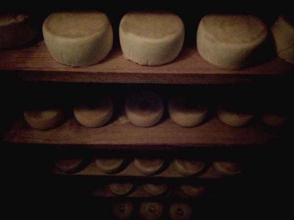 formatges_2