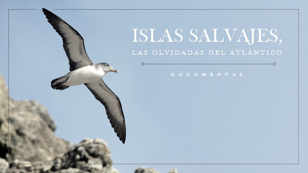 "The documentary  project ""Selvagem Islands, the forgotten ones of the Atlantic"". English version."