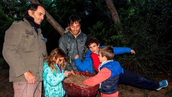 Més cistelles per al mussol banyut a l'Albufera! - ¡Más cestas para el búho chico en l'Albufera!