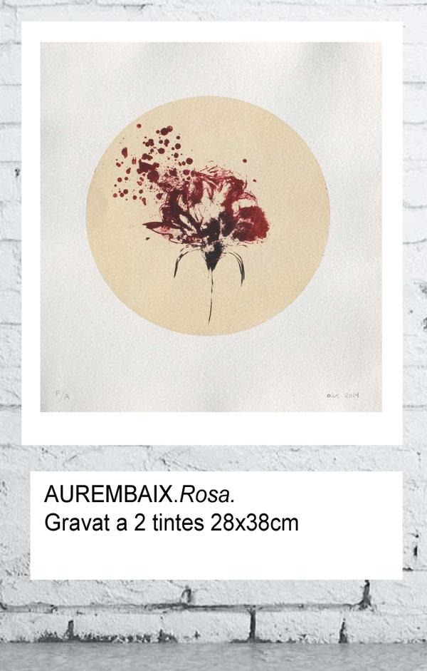 El gravat Rosa d'Aurembiaix pot ser teu