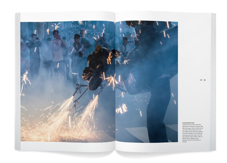 Imatge de Drac al llibre