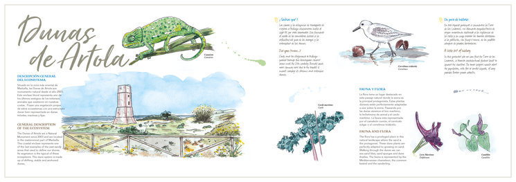 Página de Las Dunas de Artola