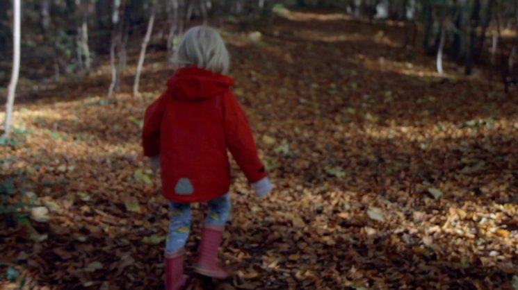 El bosque donde transcurren las historias de los Hermanos Grimm