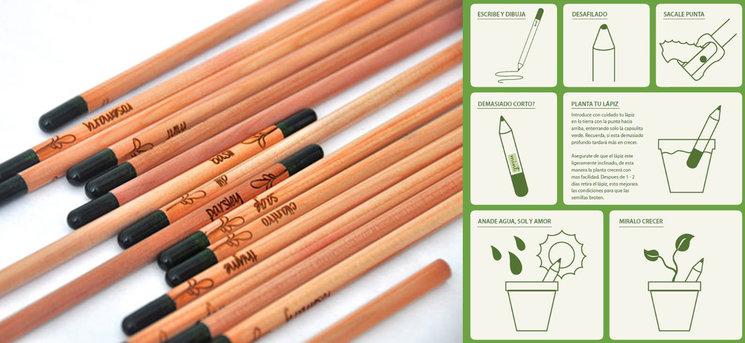 El lápiz de la vida: con semillas para comenzar tu pequeño huerto doméstico