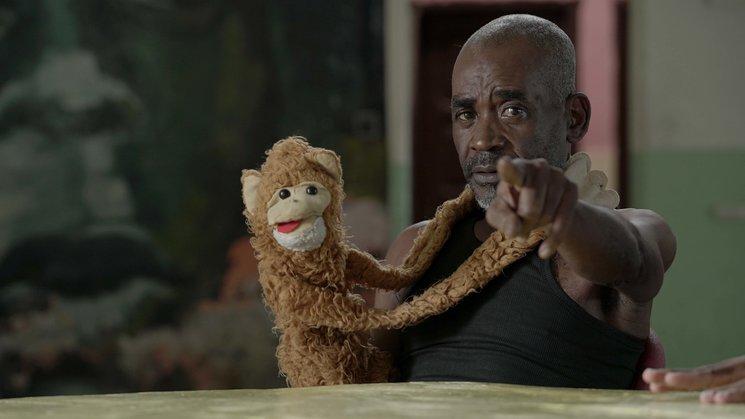 Marcelo y su mono Todías necesitan tu ayuda