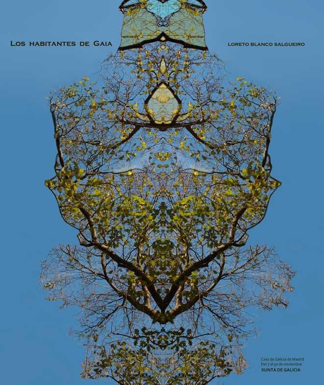 Portada catálogo Casa de Galicia de Madrid