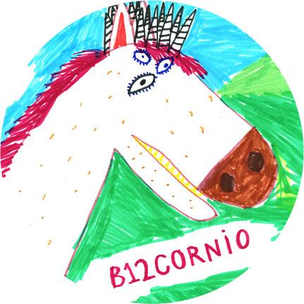 Chapa B12cornio
