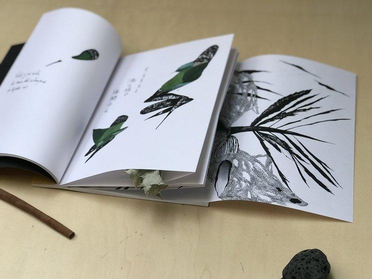 Primera maqueta del libro