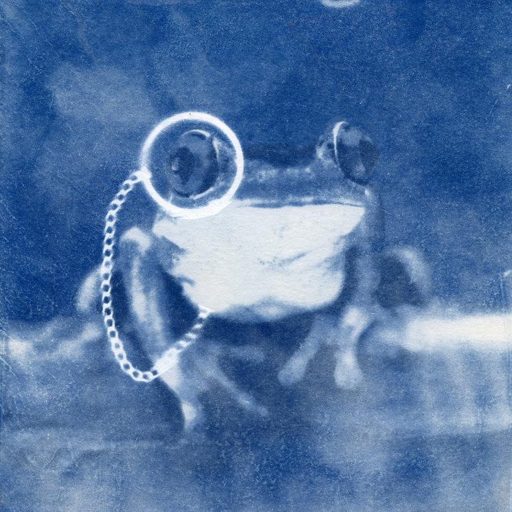 Imagen para la portada. Cianotipia obra de Juanma González