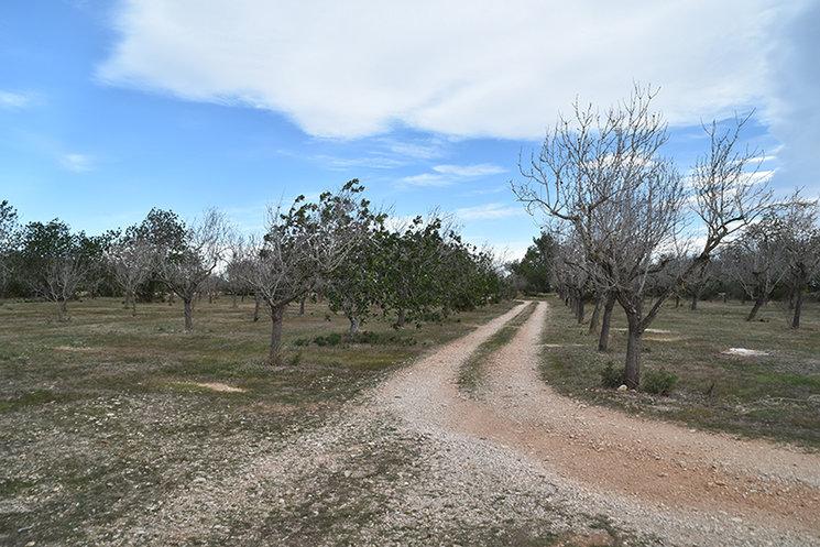 Els terrenys on viuen les famílies a les quals no perjudica el pantà.