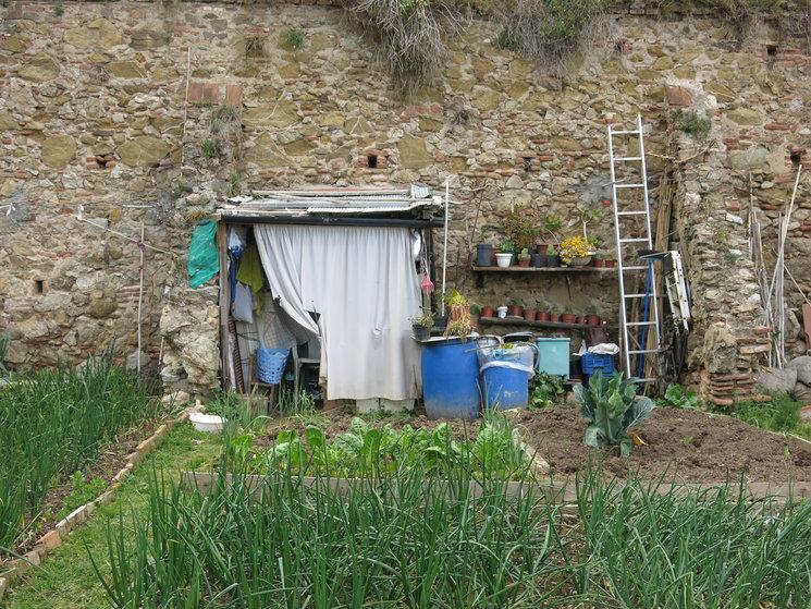 Un huerto en Can Masdeu