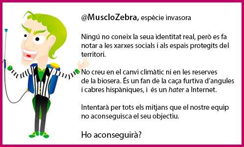 @MuscloZebra