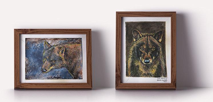 Dos cuadros (de la serie de tres sobre el Lobo Ibérico)