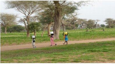 Camins de Ndokh.