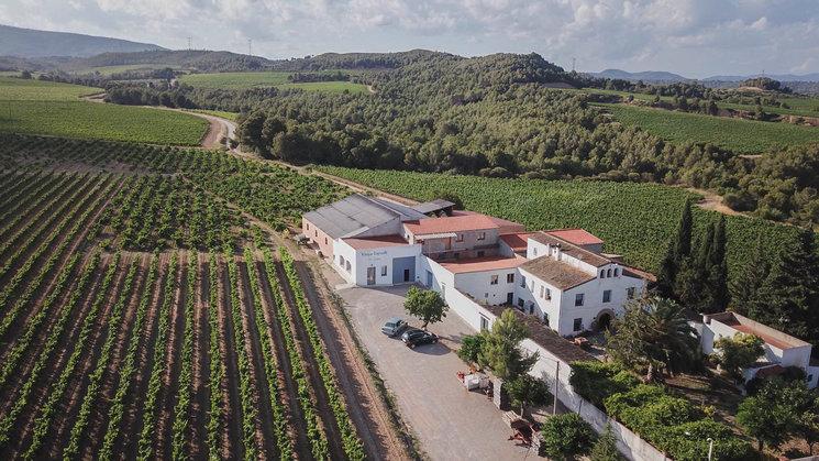Bodega Jordi Lluch elaborador de vino y cava