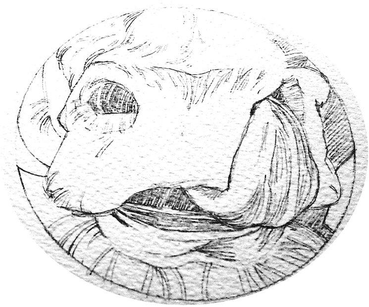 Dibujo de Francisco Muñoz