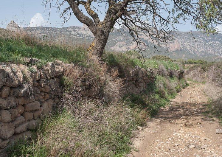 Camino de Lienas al Salto de Roldán, Huesca 2018