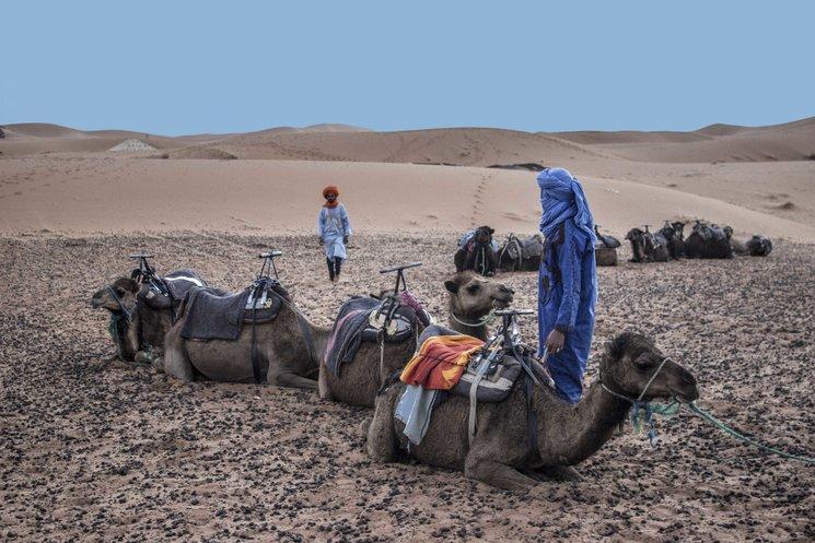 Foto de la expedición al desierto del Sáhara