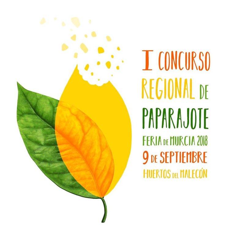 Concurso Regional de Paparajotes