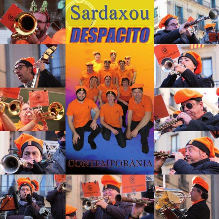 Aqui teniu els músics que han fet possible el disc Sardaxou Llatí
