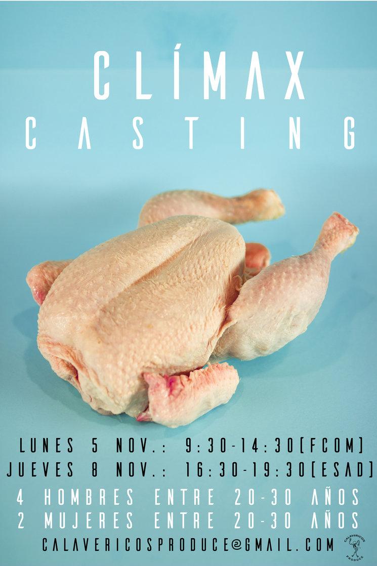 """Uno de los carteles promocionales del casting de """"Clímax"""""""