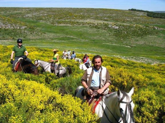 Rutas a caballo entre Piornos