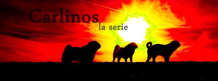 Carlinos la serie: La serie más desternillante y desconcertante